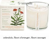 Bougie parfumée Catalan Calendula - Plant The Box