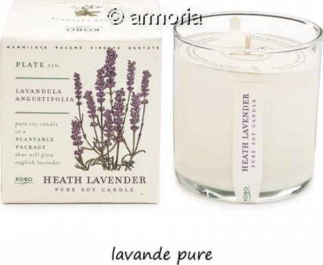 Bougie parfumée Heath Lavender - Plant The Box
