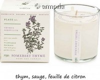 Bougie parfumée Somerset Thyme - Plant The Box