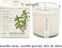 Bougie parfumée Crushed Mint - Plant The Box