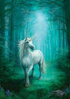 Carte Postale Forest Unicorn