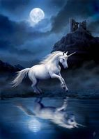 Carte Postale Moonlight Unicorn