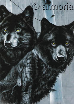 Carte postale Black Wolves